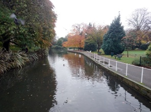 small river in park with swans and ducks