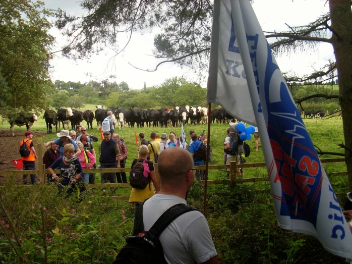 bullocks kettling NHS marchers in a field